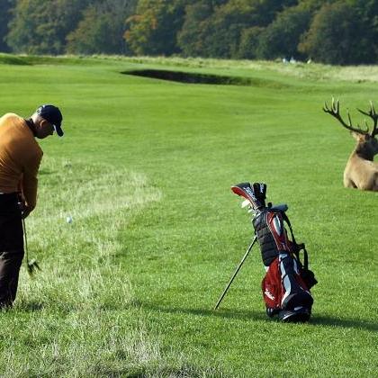 Kobenhavn Golf3