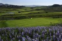 冰岛高尔夫球场-雷克雅未克高尔夫 (3)